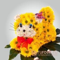 Желтый котенок
