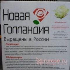 White Naiomi