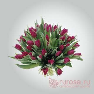 Букет из 35 тюльпанов «Фиолла»