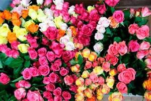 Цветы оптом в Москве