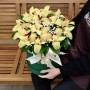 "Орхидеи в коробке ""Шекспир"""